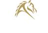 Apzara Logo