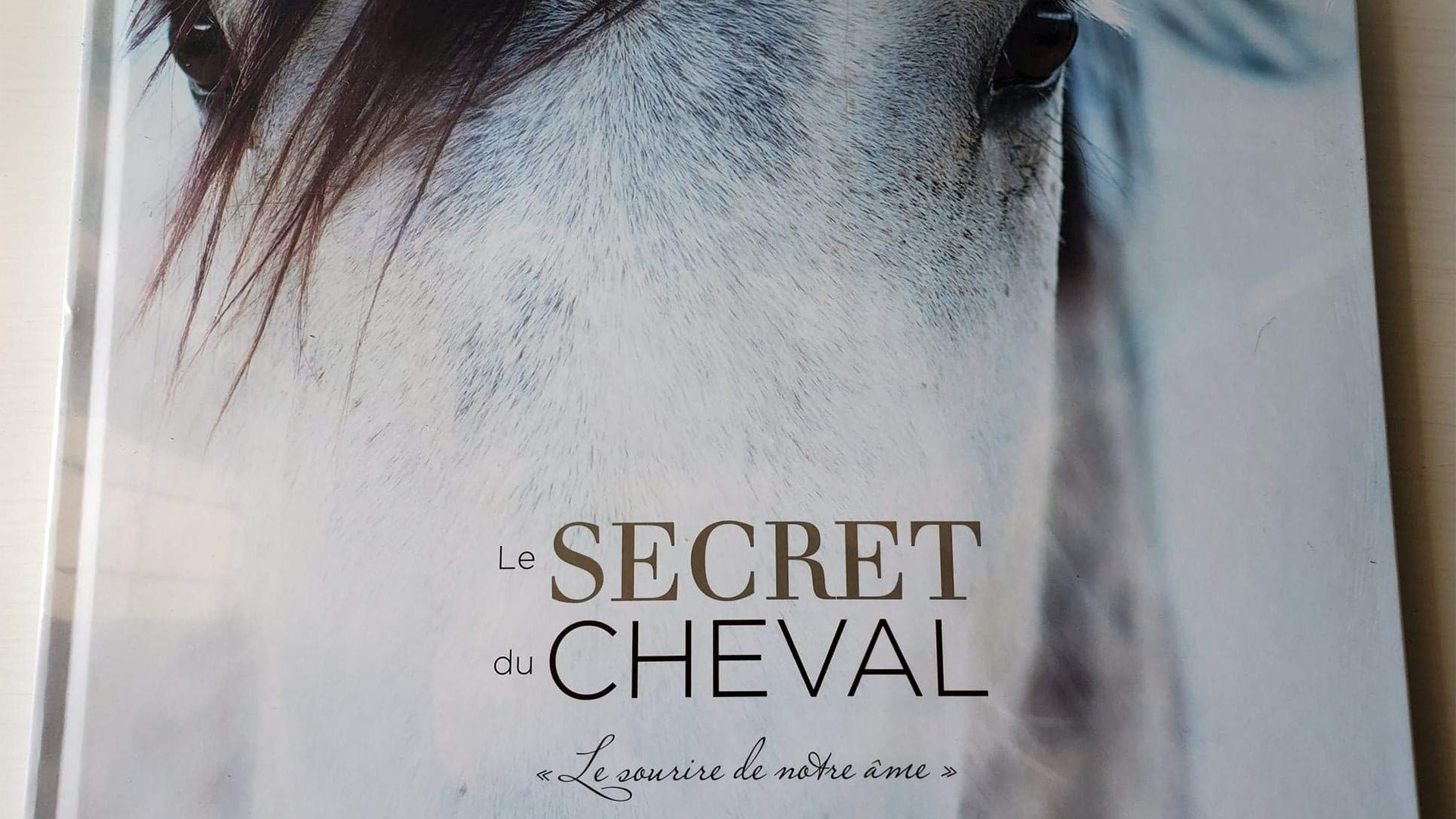 le secret du cheval